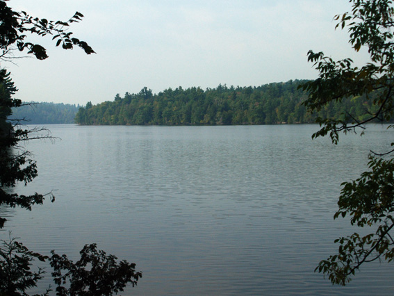 Cabin 5: Otter - View